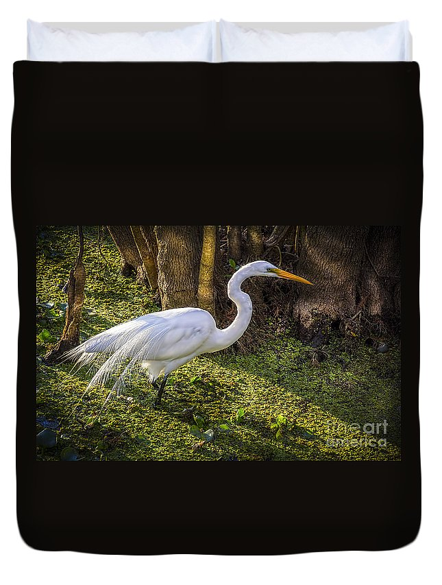 White Egret Duvet Cover featuring the photograph White Egret On The Hunt by Marvin Spates