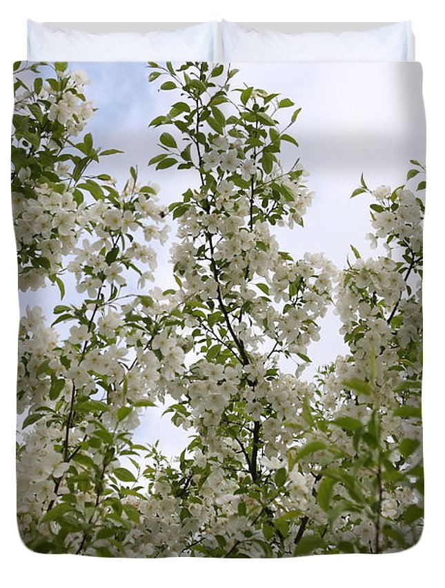 Flower Duvet Cover featuring the photograph White Flowers On Branches by Michelle Miron-Rebbe