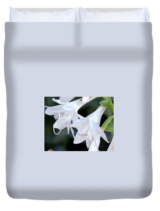 White Flower Duvet Cover featuring the photograph White Flute Blooms by Steve Archbold