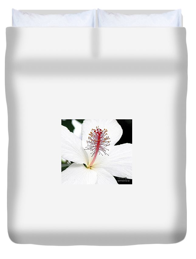 White Hibiscus Flower Duvet Cover featuring the photograph White Hibiscus by Mary Deal