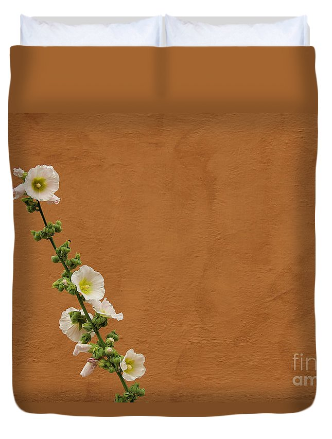 Hollyhocks Duvet Cover featuring the photograph White Hollyhock Against Orange Wall by Kerstin Ivarsson