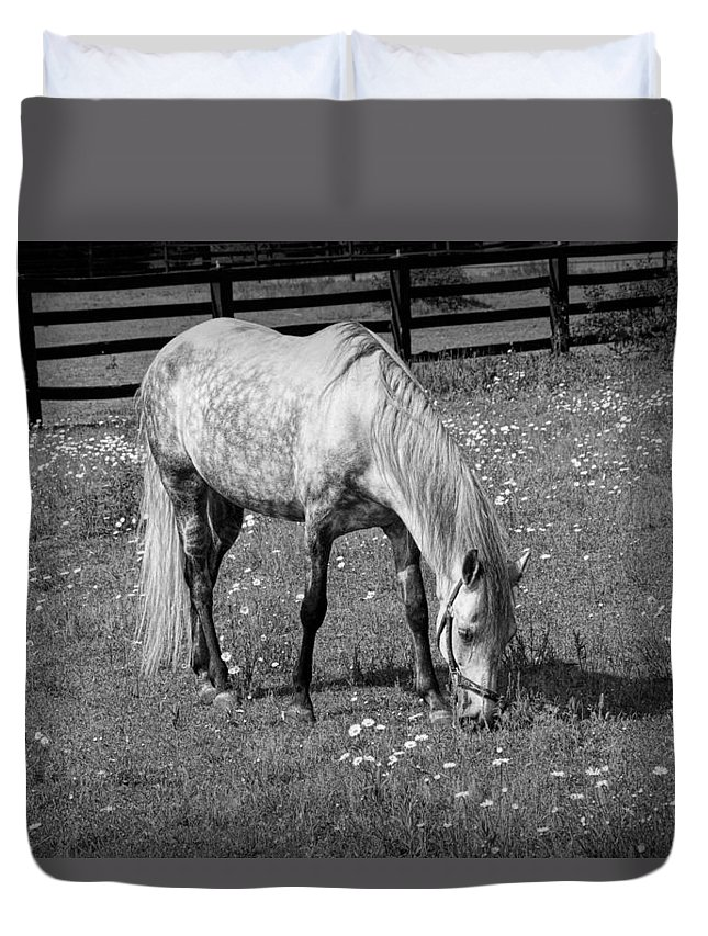 Art Duvet Cover featuring the photograph White Horse In A Pasture Among Daisy Flowers by Randall Nyhof