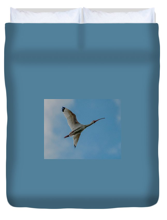 White Duvet Cover featuring the photograph White Ibis In Flight by Photos By Cassandra