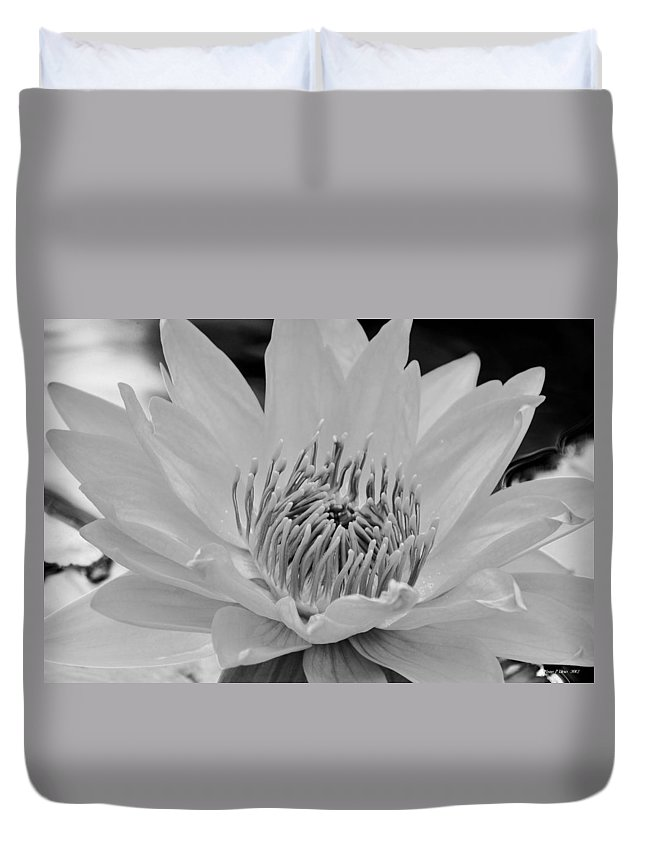 White Lotus 2 Bw Duvet Cover featuring the photograph White Lotus 2 Bw by Maria Urso