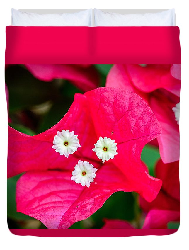 Flowers Duvet Cover featuring the photograph White On Red Trinity by Jason Chu