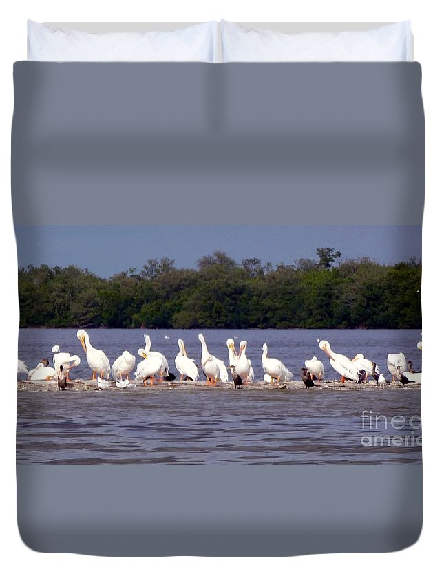 White Pelicans Duvet Cover featuring the photograph White Pelicans And Little Friends by Barbie Corbett-Newmin