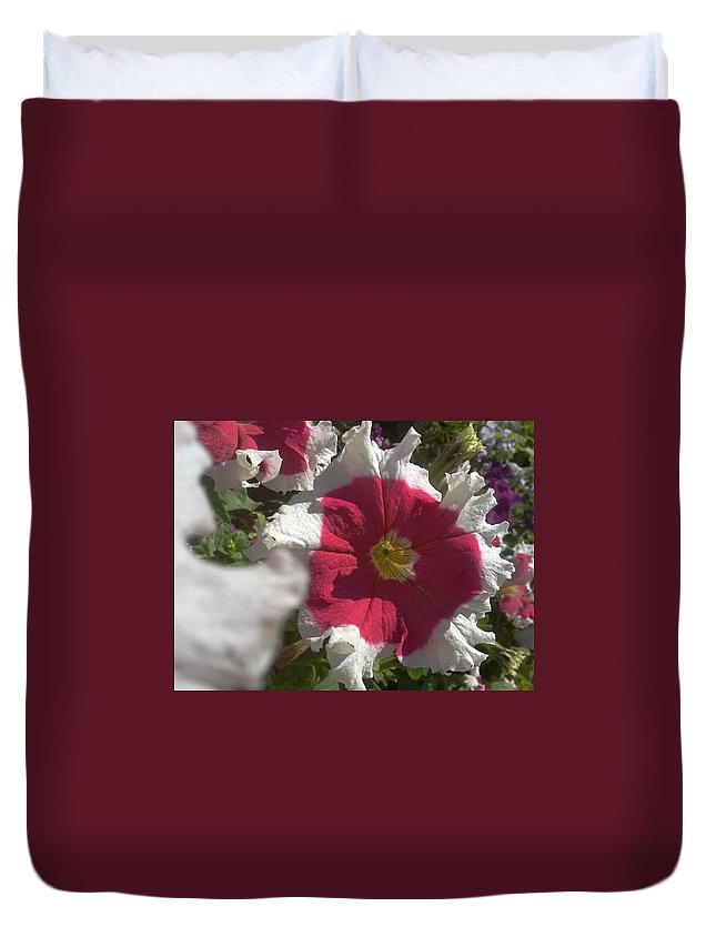 Petunia Duvet Cover featuring the photograph White-red Petunia by Artist Nandika Dutt