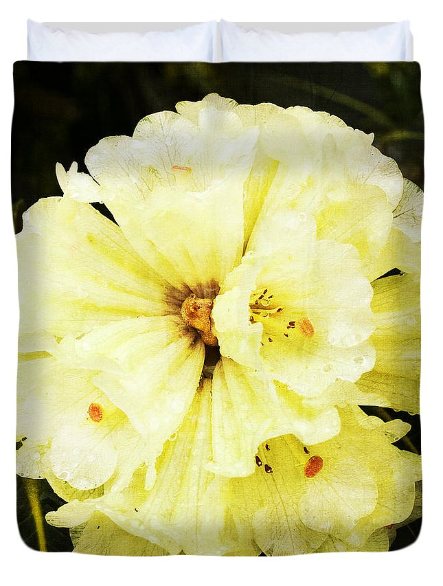 Rhododendrons Duvet Cover featuring the photograph White Rhododendrons by Brian Roscorla