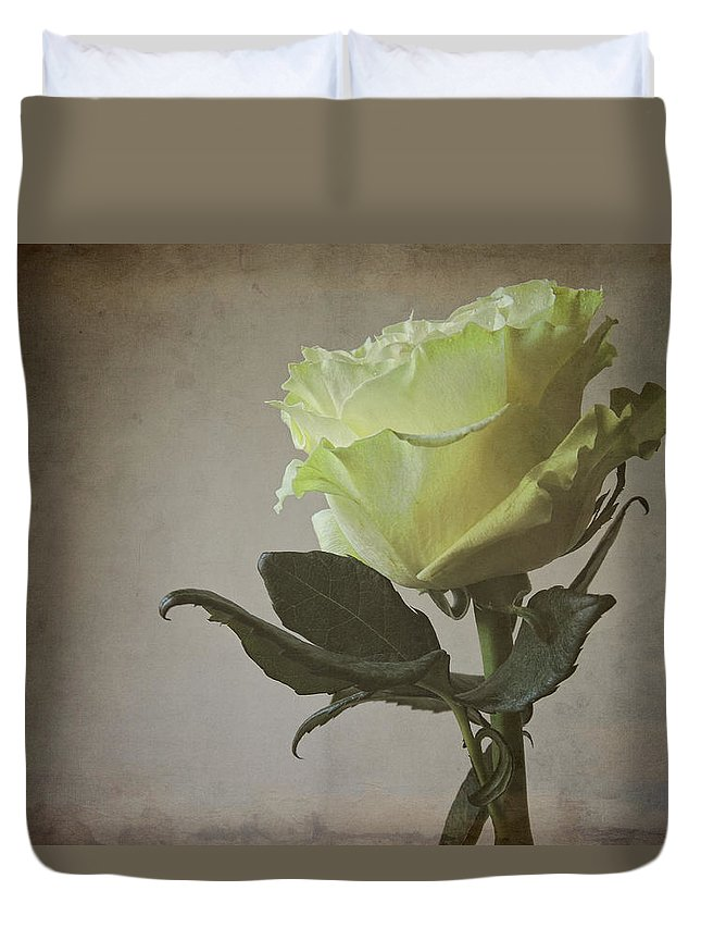 Flower Duvet Cover featuring the photograph White Rose With Old Paper Texture by Vesela Yokova
