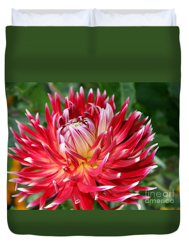 Dahlia Duvet Cover featuring the photograph White Spires by Christiane Schulze Art And Photography