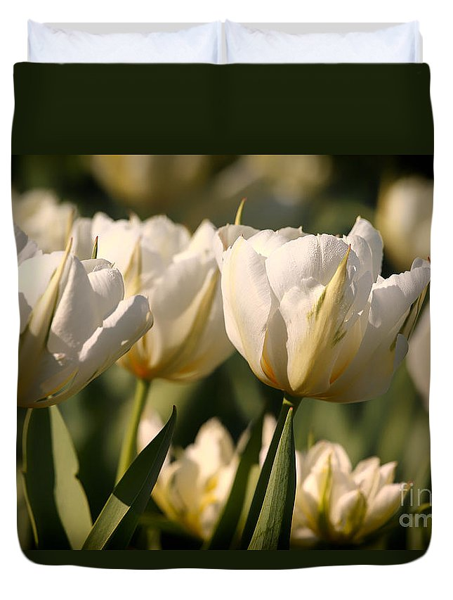 Tulips Duvet Cover featuring the photograph White Tulips by Mary Smyth