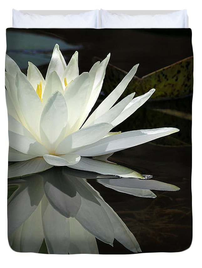 Amazing Duvet Cover featuring the photograph White Water Lily Reflections by Sabrina L Ryan