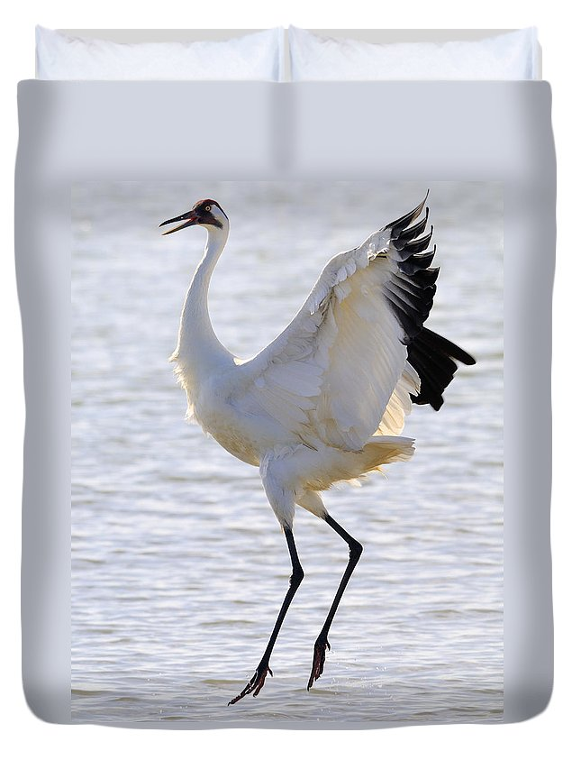 Whooping Crane Duvet Cover featuring the photograph Whooping Crane - Whooping It Up by Tony Beck