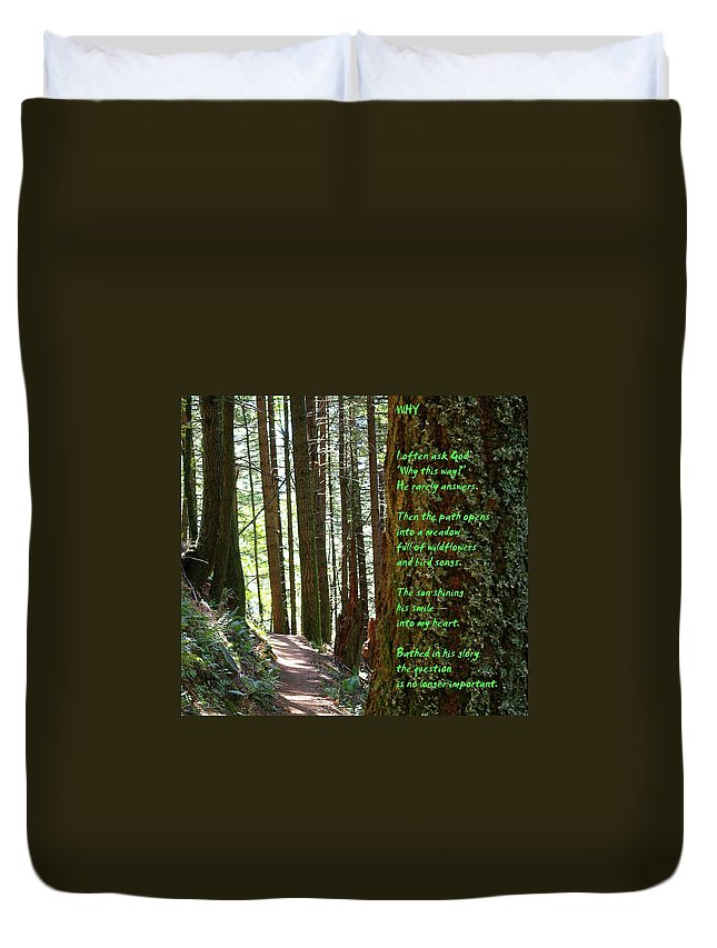 Trees Duvet Cover featuring the photograph Why by Jeff Swan