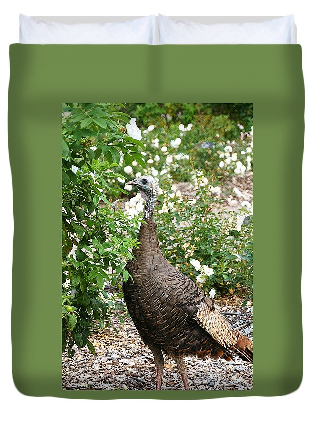 Outdoors Duvet Cover featuring the photograph Wide Eyed Wild by Susan Herber