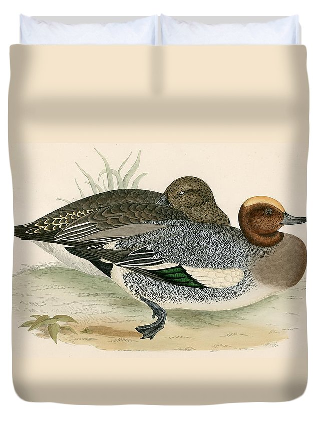 Duck Duvet Cover featuring the painting Wigeon by Beverley R Morris