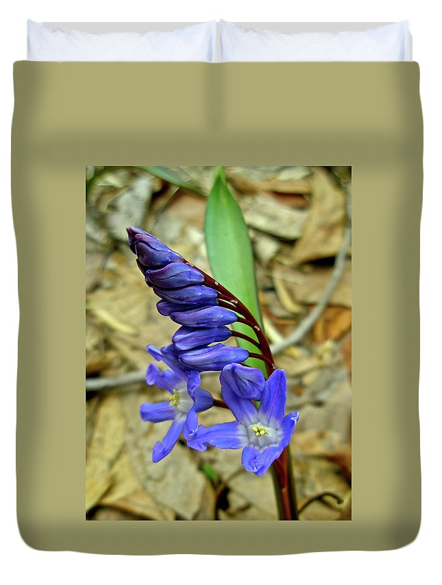 Hyacinth Duvet Cover featuring the photograph Wild Blue Hyacinth - Camassia Cusickii by Mother Nature