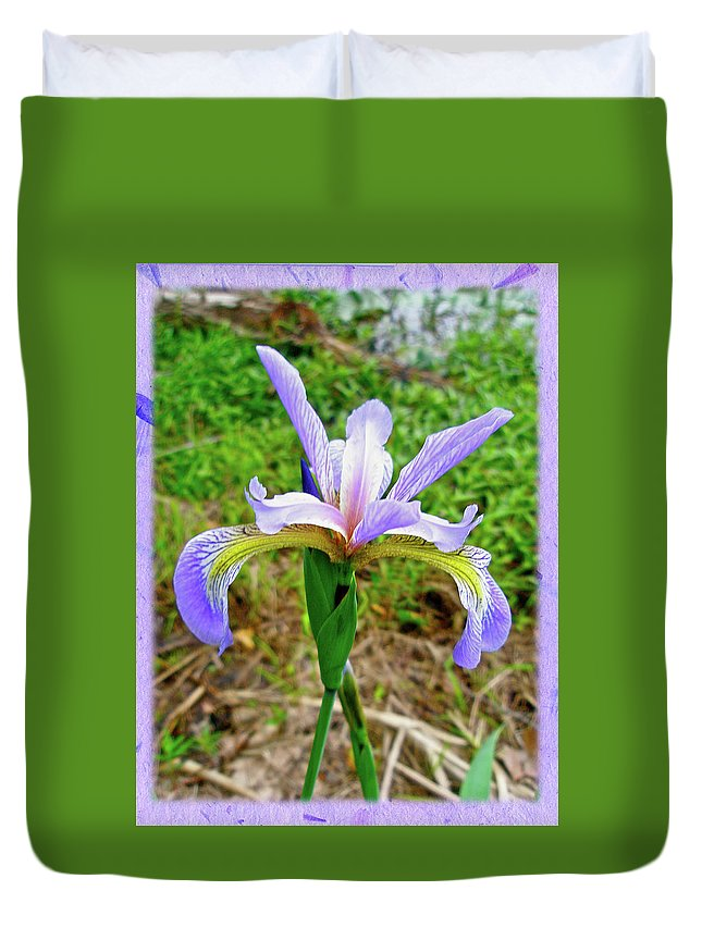 Iris Duvet Cover featuring the photograph Wild Flag - Iris Versicolor by Mother Nature