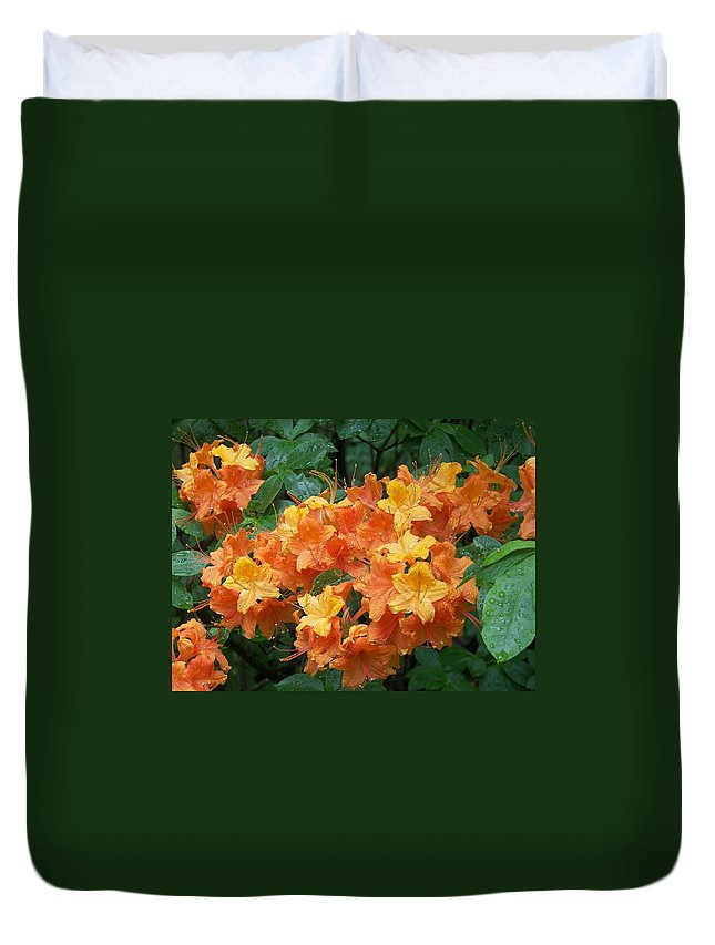 Wildflower Duvet Cover featuring the photograph Wild Flame Azalea by Paul Golder