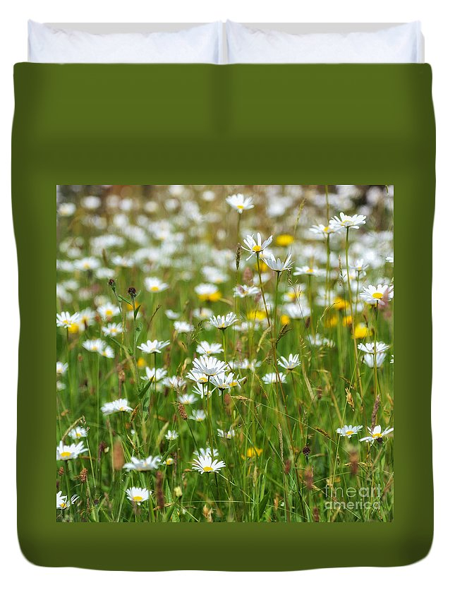 Flora And Fauna Duvet Cover featuring the photograph Wild Flower Meadow by Janet Burdon