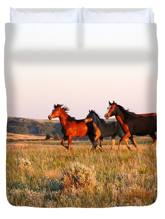 Animal Duvet Cover featuring the photograph Wild Horses At Sunset by Sabrina L Ryan