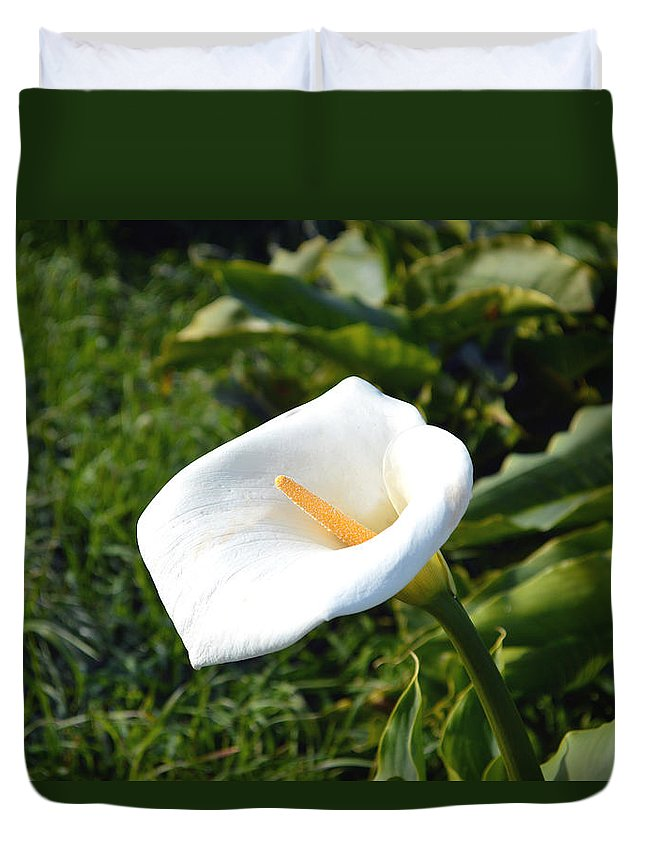 White Lilly Duvet Cover featuring the digital art Wild Lily by Barbara Snyder
