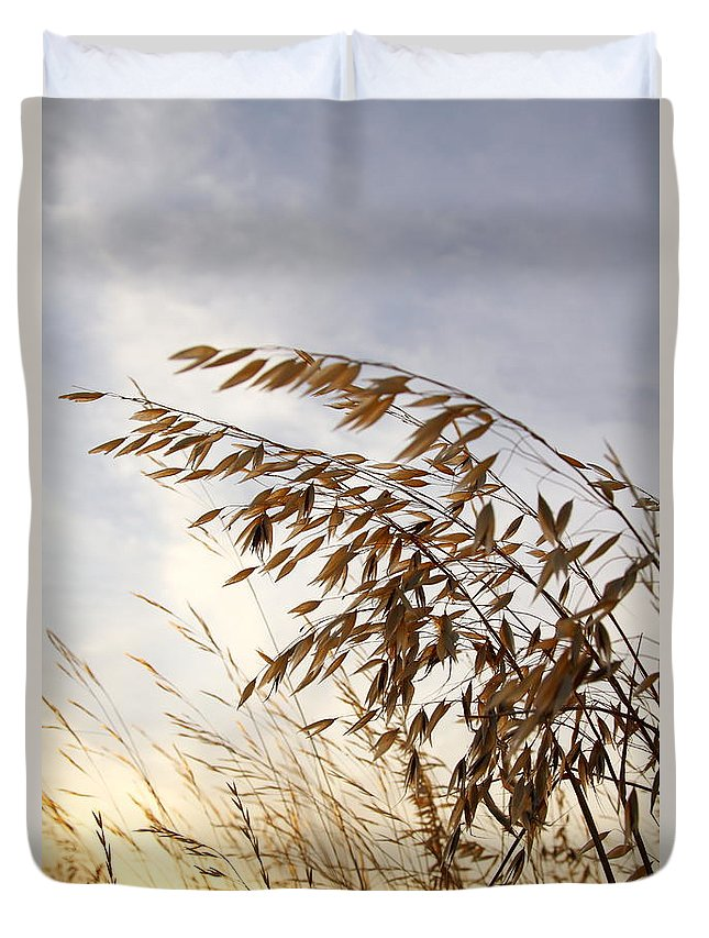 Wild Oats Duvet Cover featuring the photograph Wild Oats 2am-110432 by Andrew McInnes