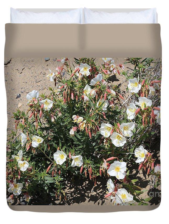 Desert Primrose Duvet Cover featuring the photograph Wildflowers - Desert Primrose by Carol Groenen