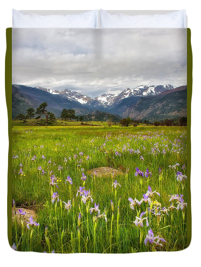 Rmnp Duvet Cover featuring the photograph Wildflowers In Rocky Mountain National Park by Ronda Kimbrow