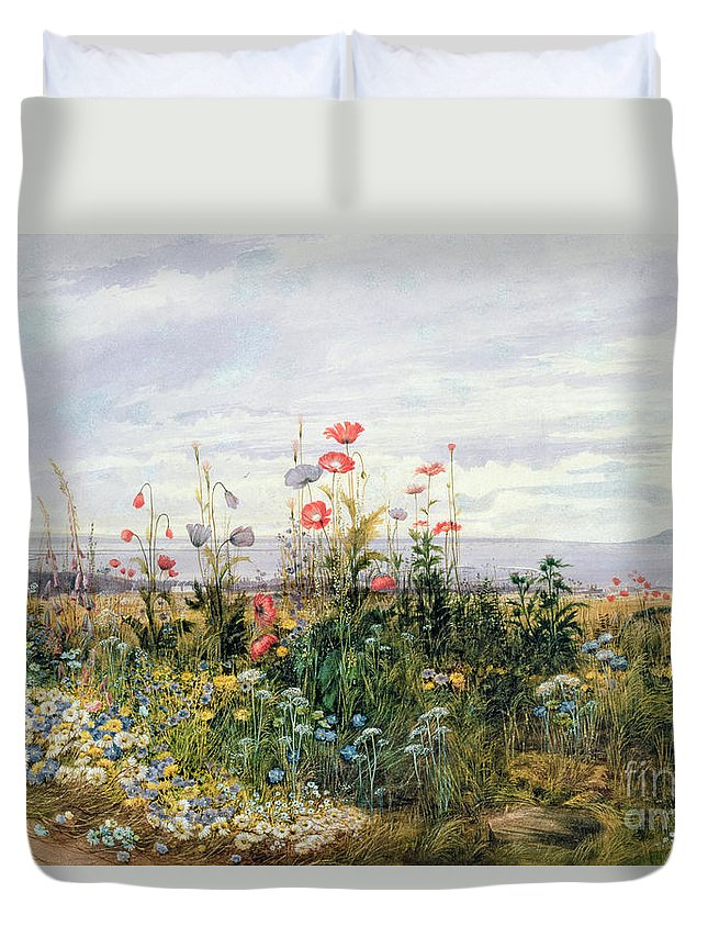 Meadow; Flowers; Irish; Wild; Landscape; Poppies Duvet Cover featuring the painting Wildflowers With A View Of Dublin Dunleary by A Nicholl