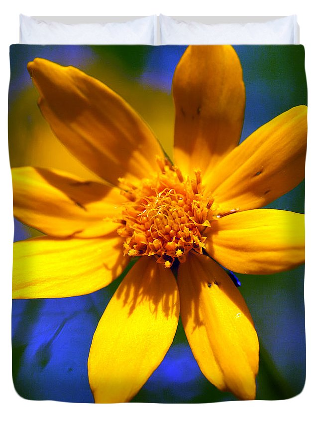 Wild Flower Duvet Cover featuring the photograph Wildly Yellow by Sandra Clark
