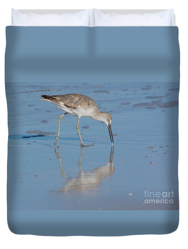 Willet Duvet Cover featuring the photograph Willet Reflection by John Greco