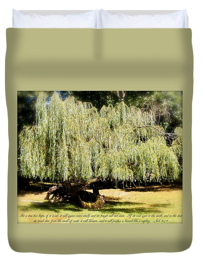 Bible Duvet Cover featuring the photograph Willow Tree With Job Verse by Richard Bryce and Family