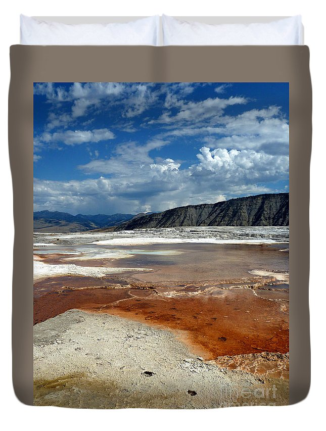 Abstract Duvet Cover featuring the photograph Windswept by Lauren Leigh Hunter Fine Art Photography