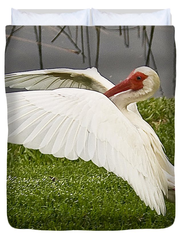 Nature Duvet Cover featuring the photograph Wing Breaks by Dennis Tyler
