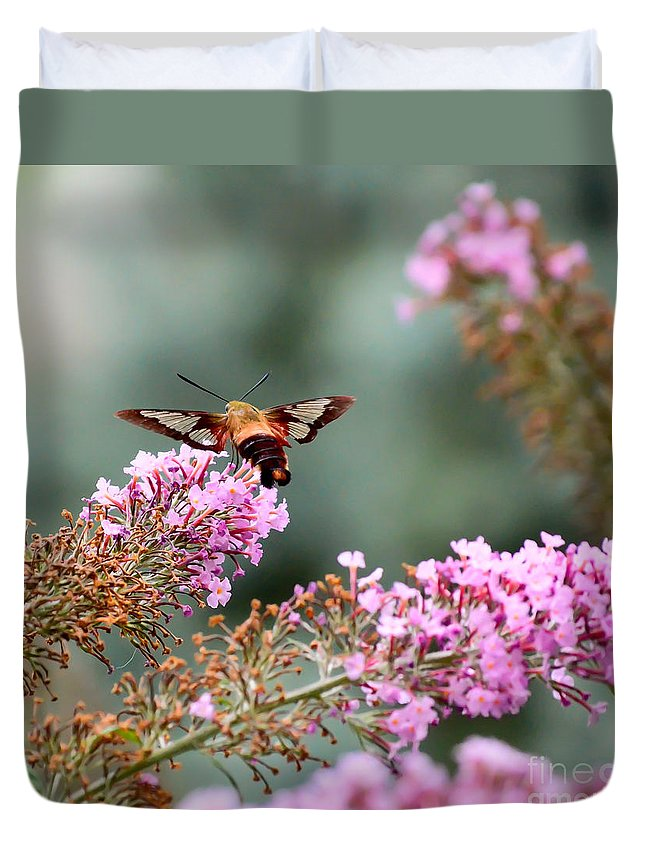 Hummingbird Moth Duvet Cover featuring the photograph Wings In The Flowers by Kerri Farley