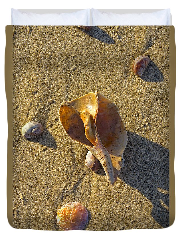 Shell Duvet Cover featuring the photograph Winter Beach by Joe Geraci