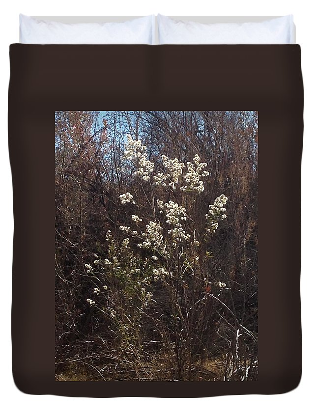 Fuzz Duvet Cover featuring the photograph Winter Blossoms by Erika Chamberlin