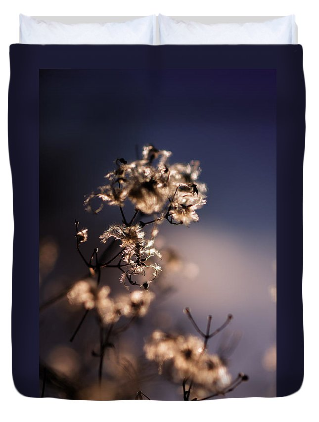 Winter Duvet Cover featuring the photograph Winter Blues by Miguel Winterpacht