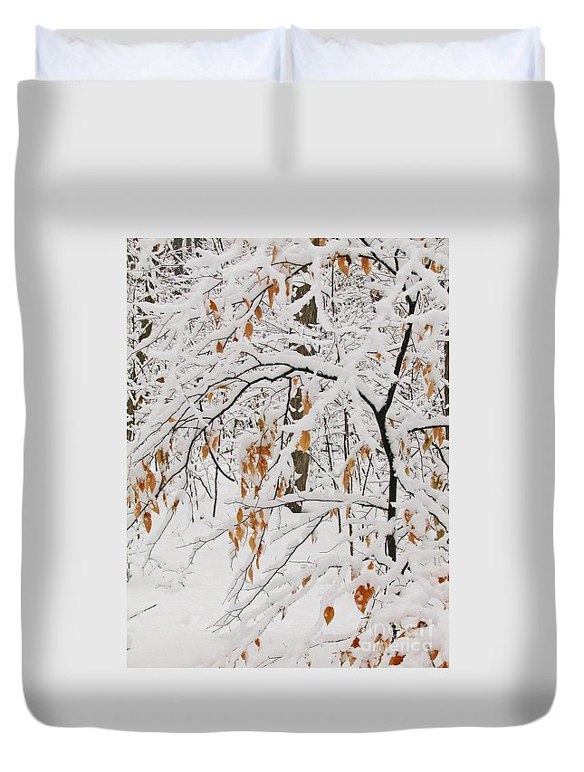 Winter Duvet Cover featuring the photograph Winter Branches by Ann Horn