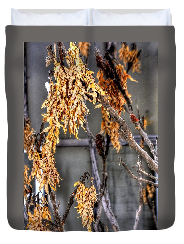 Denver Duvet Cover featuring the photograph Winter Foliage Old House 13126 by Jerry Sodorff