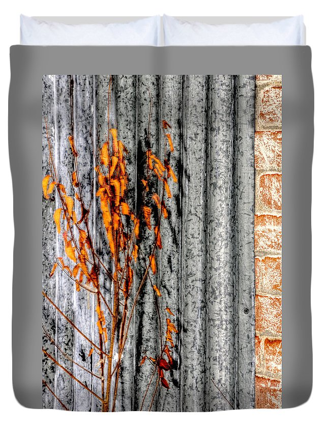 Denver Duvet Cover featuring the photograph Winter Foliage Tin 13134 by Jerry Sodorff