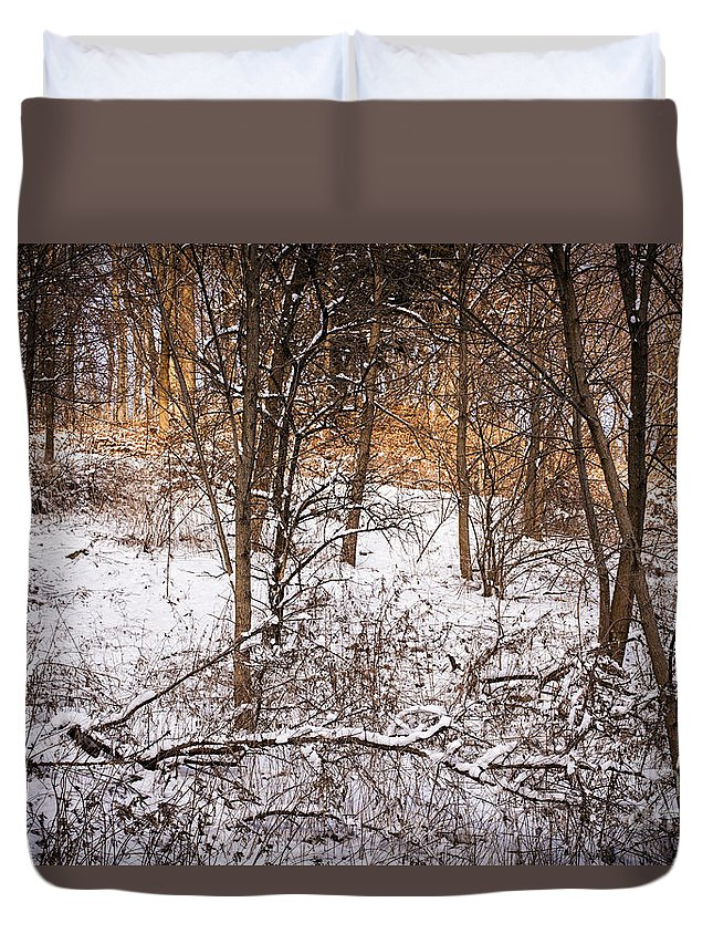 Winter Duvet Cover featuring the photograph Winter Forest by Elena Elisseeva
