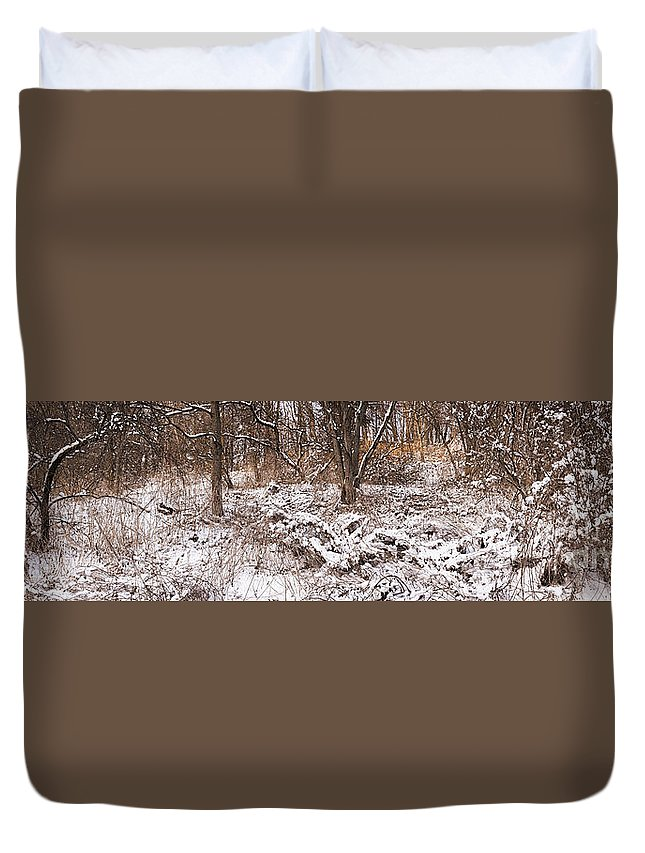 Winter Duvet Cover featuring the photograph Winter Forest Panorama by Elena Elisseeva