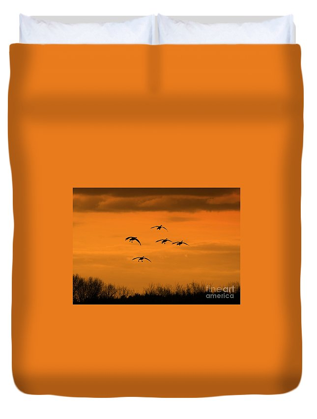 Geese Duvet Cover featuring the photograph Winter Landing No.2 by Neal Eslinger