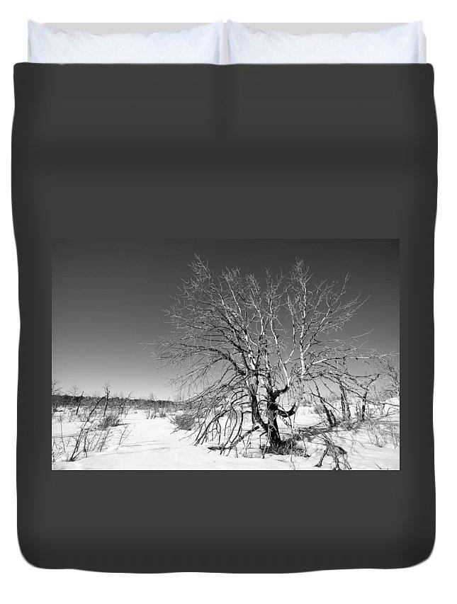 Landscape Duvet Cover featuring the photograph Winter Landscape by Alexey Stiop