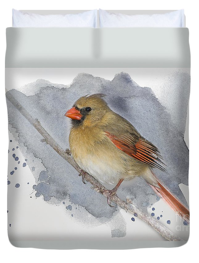 Cardinal Duvet Cover featuring the photograph Winter Northern Cardinal by Betty LaRue