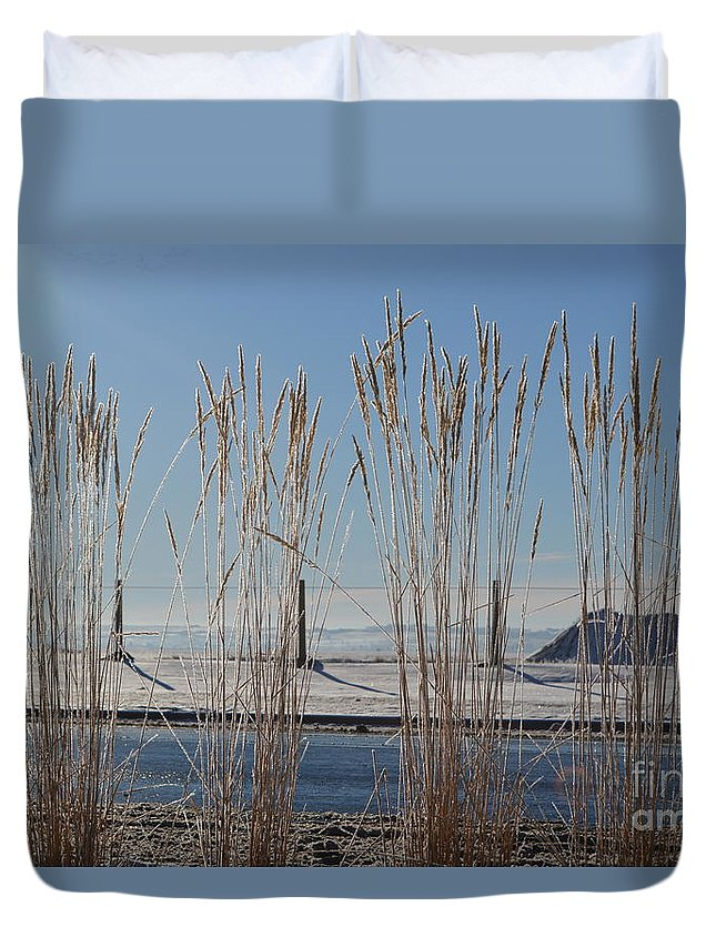 Winter Duvet Cover featuring the photograph Winter Parade by Brian Boyle