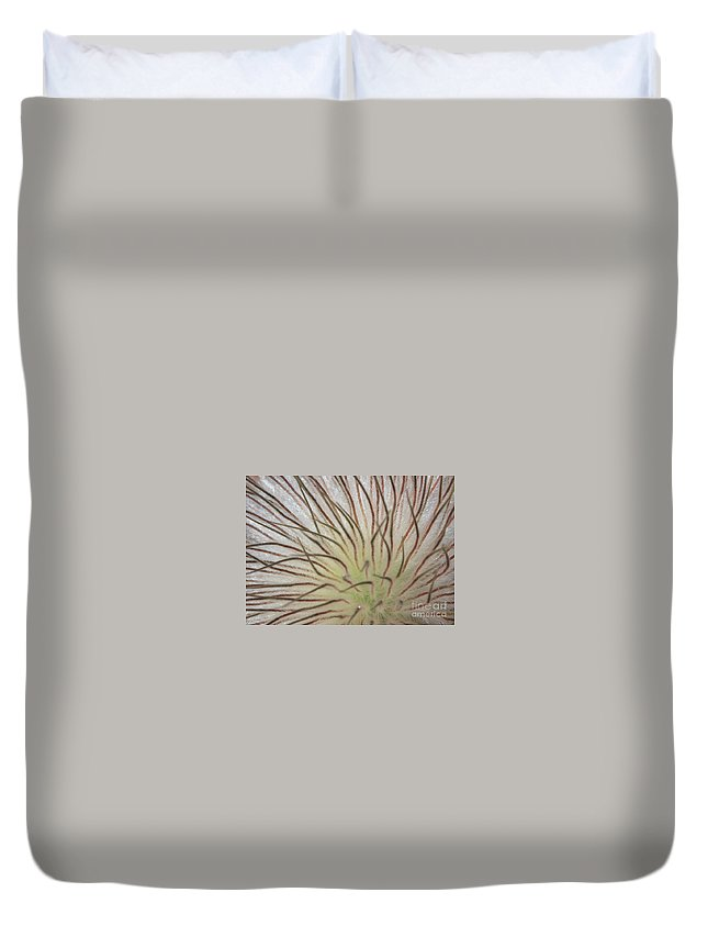 Pasque Flower Duvet Cover featuring the photograph Winter Pasque Flower by Carol Groenen