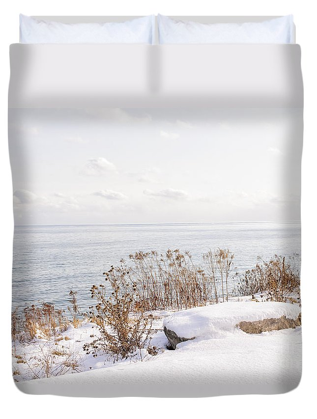Plants Duvet Cover featuring the photograph Winter Shore Of Lake Ontario by Elena Elisseeva